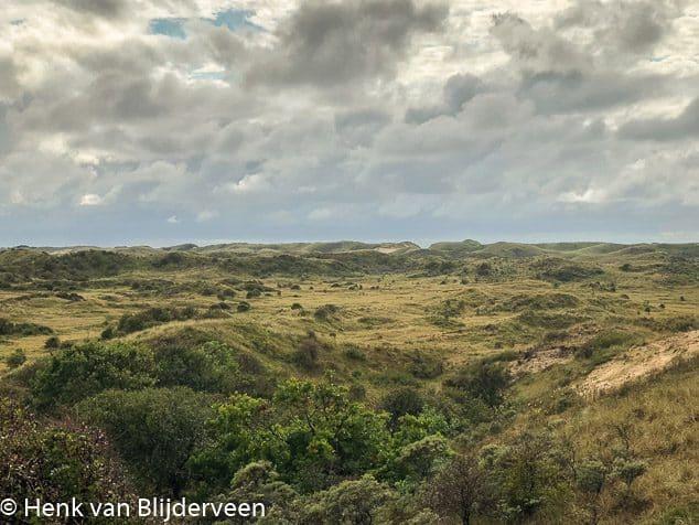 Uitkijkpunt duinen bij Castricum
